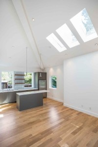 skylight-kitchen-nopa